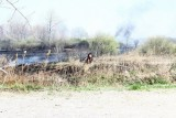 20080424_milford_ct_marsh_fire_silver_sands-14.JPG