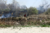 20080424_milford_ct_marsh_fire_silver_sands-15.JPG