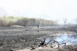 20080424_milford_ct_marsh_fire_silver_sands-21.JPG