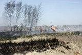 20080424_milford_ct_marsh_fire_silver_sands-29.JPG