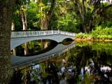 Magnolia Plantation - Charleston, South Carolina