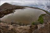 Salt-water lagoon in Floreana