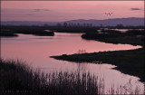 Sunset at the Merced NWR