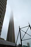 2009-08-29 Foggy