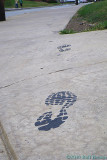 2010-08-05 Footprints