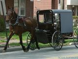 2006-04-15 Amish