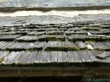 Wood-Shingle Roof