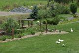 Snider House garden