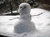 2008-02-13 Snowman