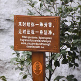Chinglish 6907ch.jpg