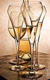 Cheers 2008  Basil
