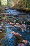 Manganese Creek