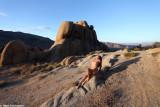 IMG_1322 (High Desert)