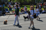 memdayparade2008-154.jpg