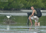 Ben and his Friend the Tricolored Heron