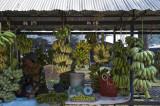 12 Banana Varieties.jpg
