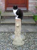 ... as garden ornament
