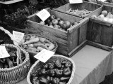 Vegetables for Sale, Common Ground Country Fair
