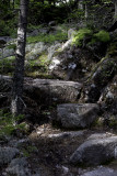 Parkman Mountain Trail Head
