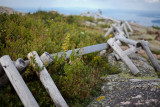 Fence on Top of Cadillac Mountain #1
