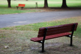 Childs Park Benches