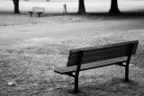 Childs Park Benches Monochrome