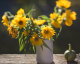 Backlit Liitle Sunflowers in Vase on Railing with Tiny Pumpkin