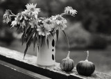 Vase of Little Sunflowers on Rail with Two Tiny Pumpkins