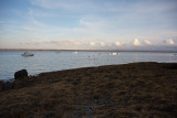 Late Afternoon at the Beach #2