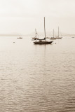 Fog and Boats, Union River Bay #3