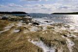 Morgan Bay in Winter