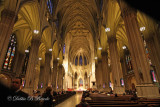 St. Patrick's Cathedral inside 02