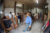 I Pernillas stall