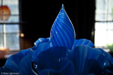 blå bukett