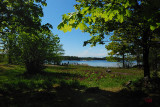 Adamsängen 2008-05-27
