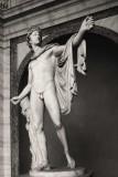 Apollo of the Belvedere -Vatican Museum
