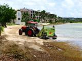 Sea-weed, keeping maintenance busy