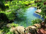 Redland Bonsai Garden