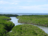 Jewfish Creek