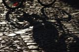 Shadows #6
