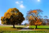 Geneva's countryside