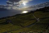 Sunset on Lake Geneva vineyards