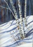 white-birch-blu-shad.jpg