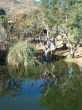Reflections at Sun City