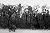 Yosemite Falls meadow