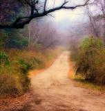 * The Long and Winding Road