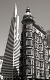 10th Place- urban dichotomy (by Michael Puff)