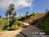 DSC01029p.jpg
