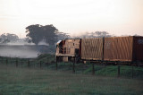 Fog and Sunrise