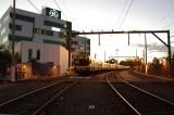 BLS at Dawn